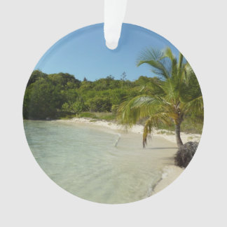 Antiguan Beach Beautiful Tropical Landscape Ornament