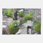 Antipodes Island Parakeet Hand Towels