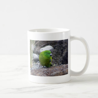 Antipodes Island Parakeet Coffee Mugs