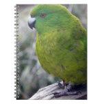 Antipodes Island Parakeet Spiral Note Books