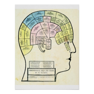Antique 1857 phrenological head and chart print