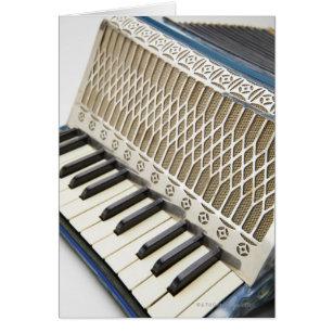 Antique Accordion Keyboard