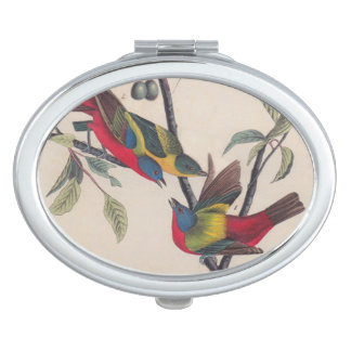 Antique Audubon Painted Bunting Bird Mirrors For Makeup