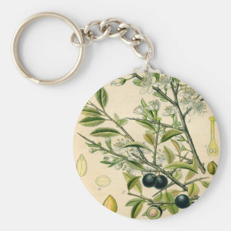 Antique Botanical Print Blackthorn Floral Drawing Basic Round Button Key Ring