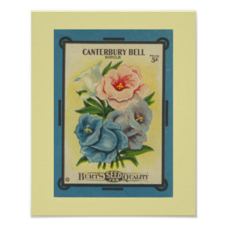 Antique Canterbury Bells Poster