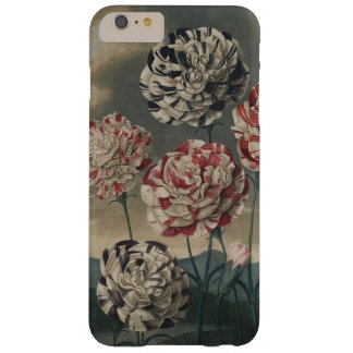 Antique Carnations Barely There iPhone 6 Plus Case
