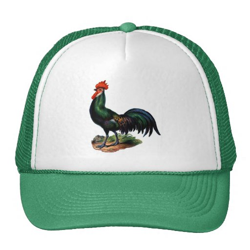 Antique Green Feathers Rooster Hats