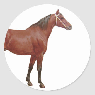 Antique Horses - Thoroughbred Round Stickers