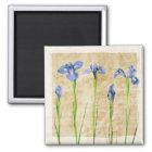 Antique Irises - Vintage Iris Background Customise Magnet