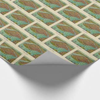Antique New York City Bird's Eye View Map Wrapping Paper