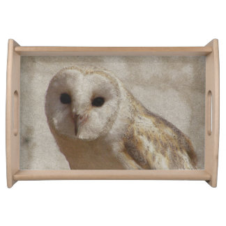 Antique Owl Serving Tray