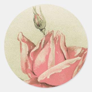 Antique Pink Rose Sticker