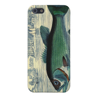 Antique Salmon Fish Fishing Print Case For iPhone 5/5S
