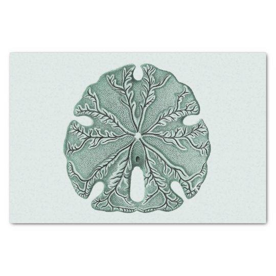 Antique Sea Sand Dollar Illustration Tissue Paper