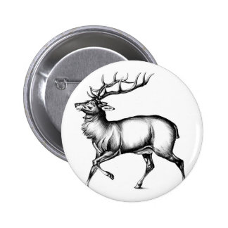Antique stag art drawing handmade nature 6 cm round badge