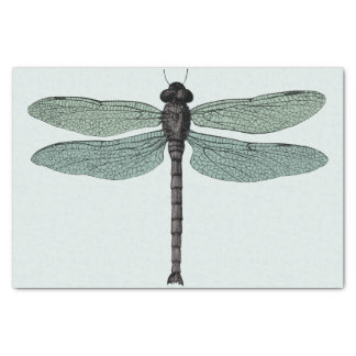 "antique typographic vintage dragonfly 10"" x 15"" tissue paper"