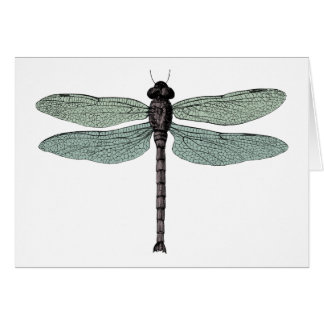 antique typographic vintage dragonfly Note Card