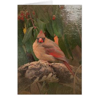 Antiqued Cardinal Card