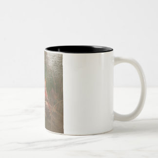Antiqued Cardinal Two-Tone Coffee Mug