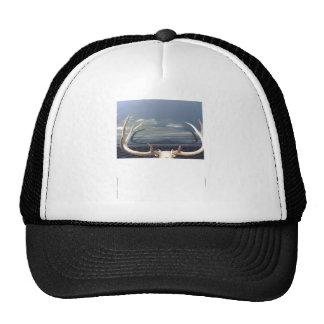 Antlers Mesh Hat