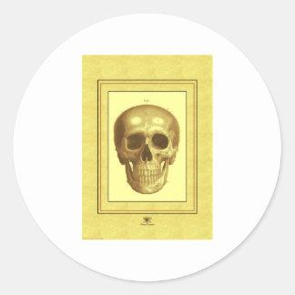Antque Skull Round Sticker