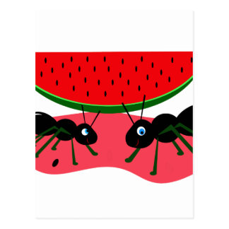 Ants and watermelon postcard
