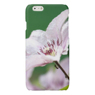 Ants climbing up a pink flower in the garden iPhone 6 plus case