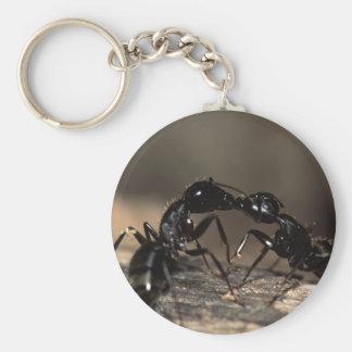 ants key chain