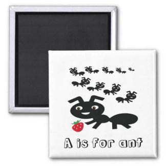 Ants Magnet