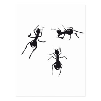ANTS POST CARDS