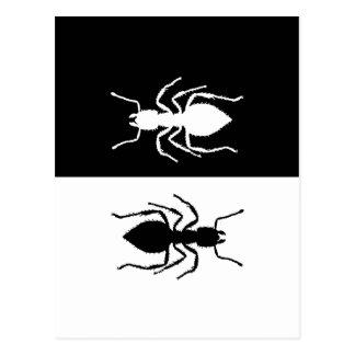 Ants Postcard