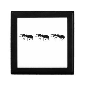 Ants Small Square Gift Box