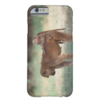 Anubis Baboon Barely There iPhone 6 Case
