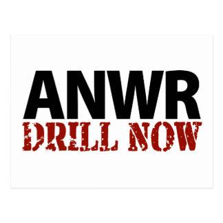 ANWR Drill Now Postcard