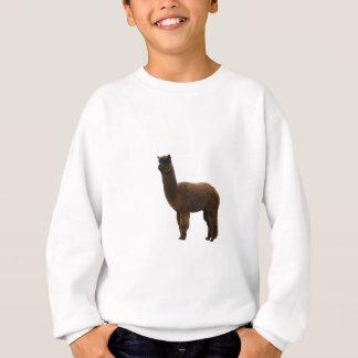 Apaca stud sweatshirt