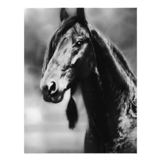 Apache horses personalized flyer