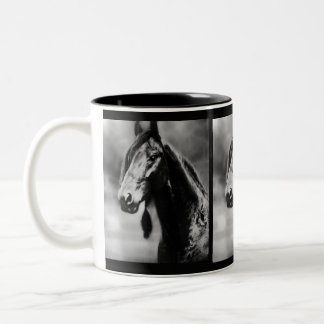 Apache horses Two-Tone mug