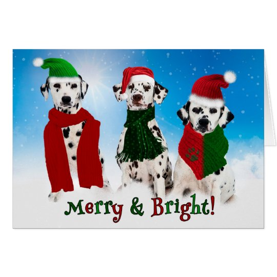 APAL - Christmas Dalmatian Dogs in the Snow