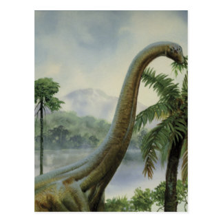 Apatosaurus (Brontosaurus) Eating Illustration Postcard