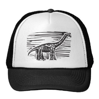 Apatosaurus Fossil Hats