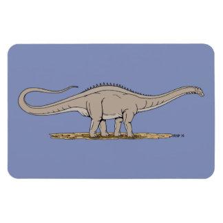 Apatosaurus Rectangular Photo Magnet