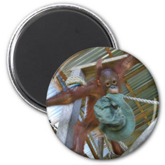Ape for Green 6 Cm Round Magnet