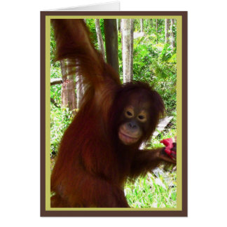Ape for Watermelon Greeting Cards