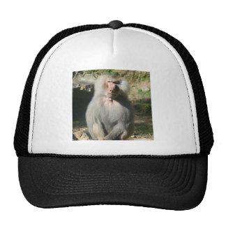 Ape Hat