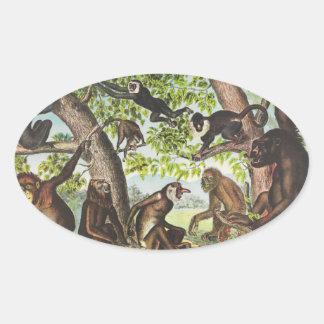 Apes & Primates Oval Sticker