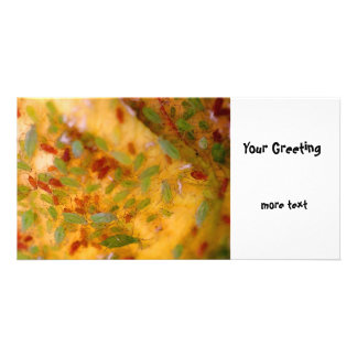 Aphids Infestation Photo Greeting Card