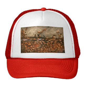 Apiary - Bee's - Sweet success Hats