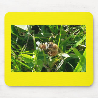Apiary Life mouse pad