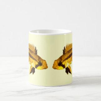 Apistogrammas Dwarf Cichlid Classic White Coffee Mug
