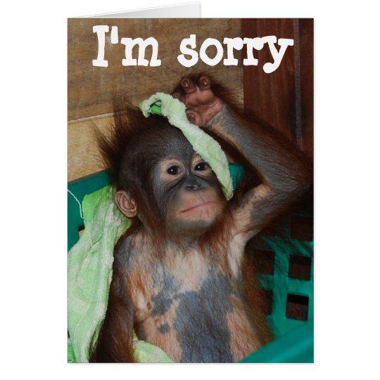 Apology I'm Sorry Card